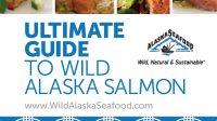 Alaska Salmon Guide