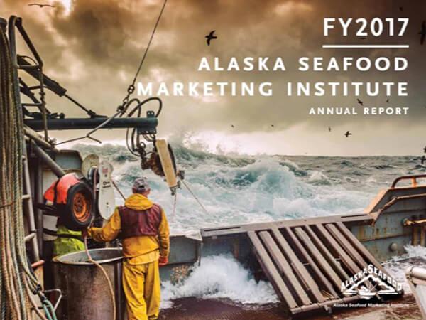 ASMI Annual Report 2017