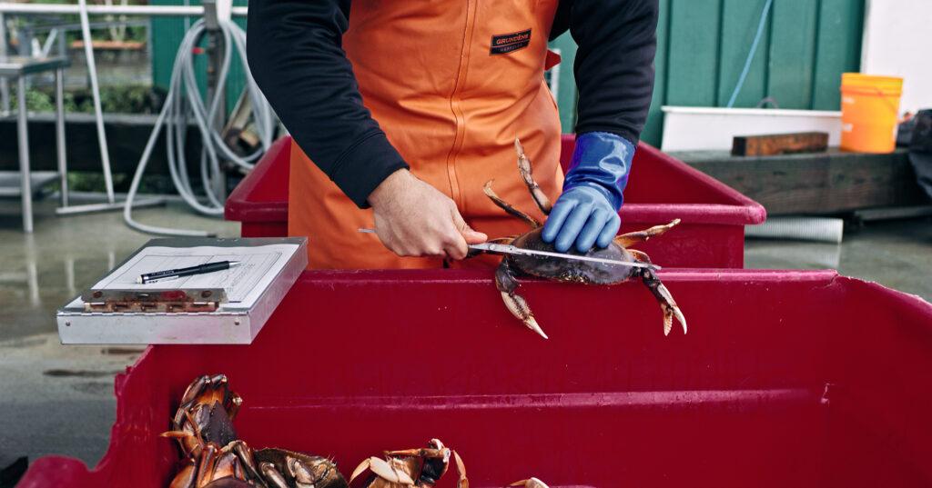 Full Transparen-Sea: Alaska Seafood Is Sustainable